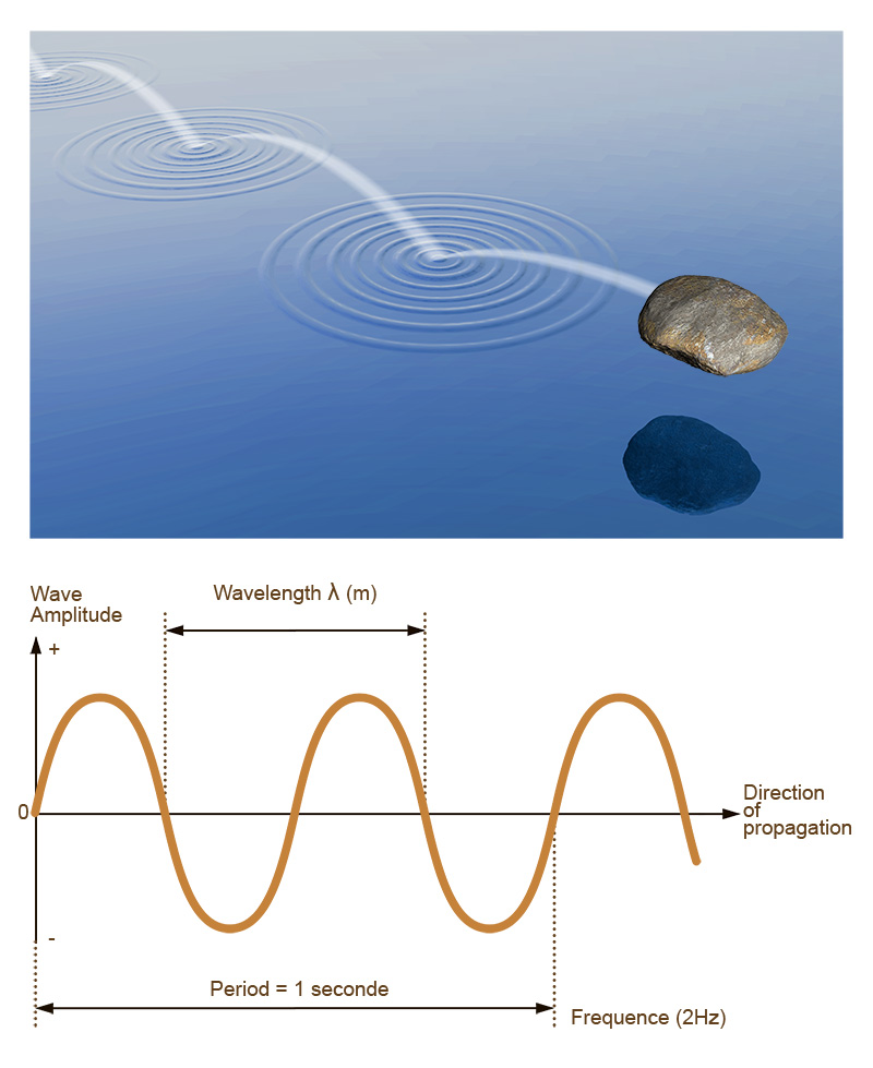 Schematic representation of a seismic wave (© IPGP/David Ducros).