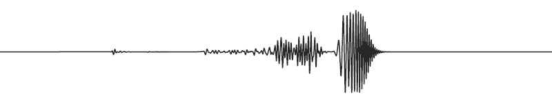 Mid frequency seismic wave (© IPGP/ETHZ).