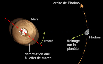 Mécanisme d'action de la force d'attraction de la lune Phobos sur Mars (© IPGP/David Ducros).